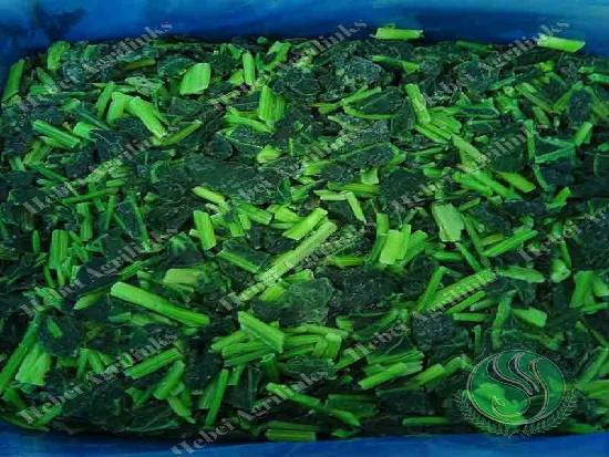 Frozen Vegetables Are Equally Nutritious